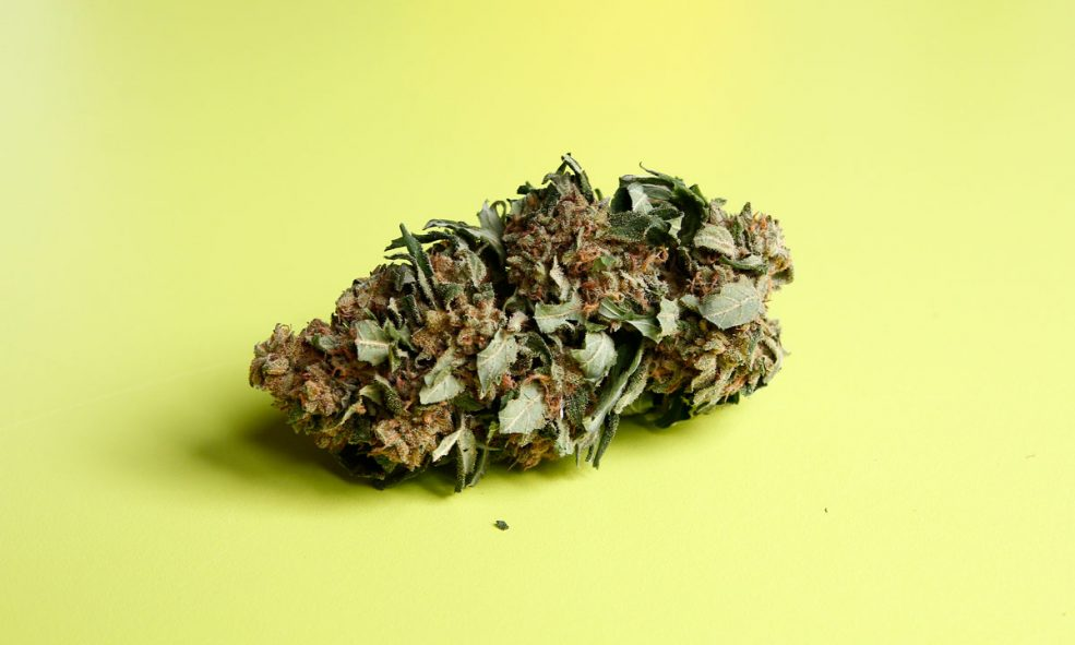 4 DJs Share Their Favorite Cannabis Strains