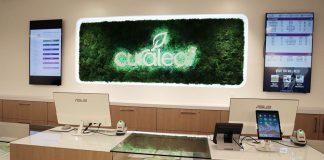Curaleaf Cannabis Dispensary In Queens Offers High End Experience