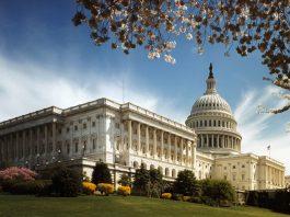 Legal Marijuana Might Help Democrats Gain Control Of The Senate