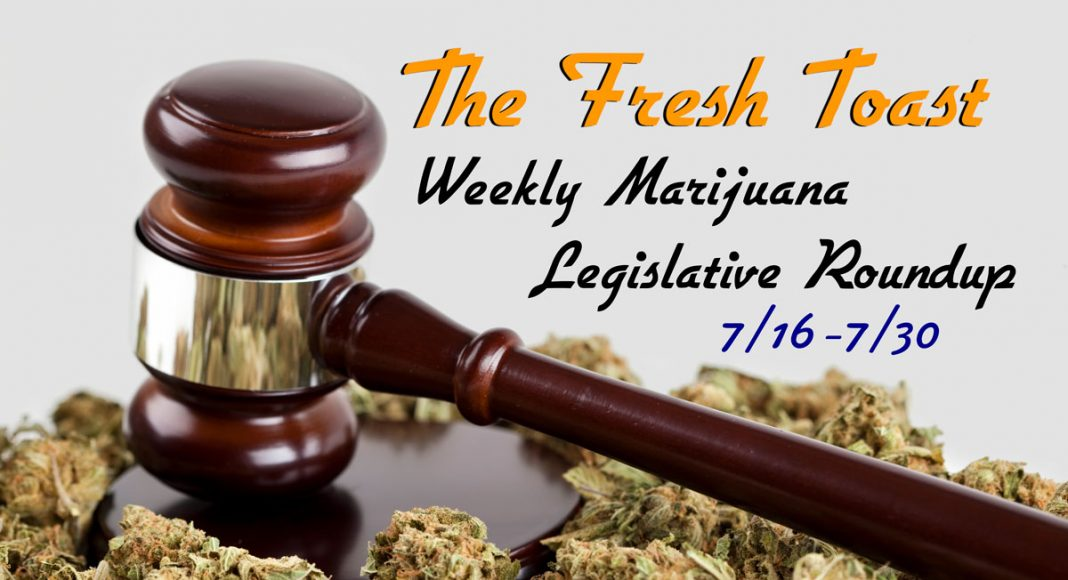 Marijuana Legislative Roundup
