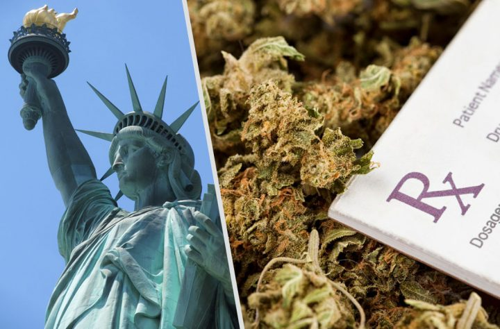 New York Health Department Recommends Marijuana Legalization