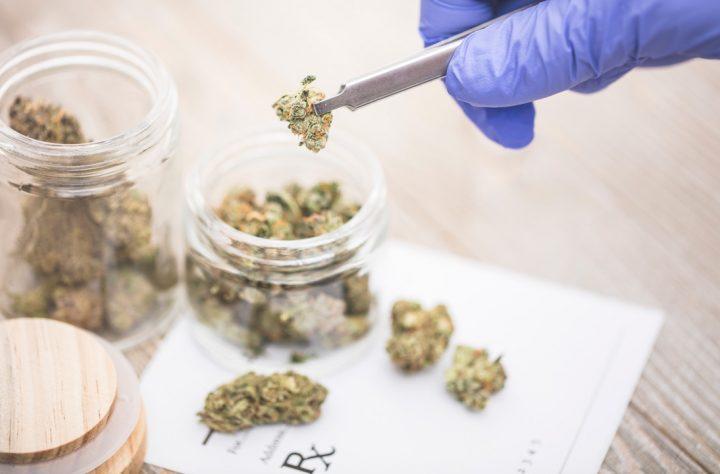 Veterans Still Fighting For Legitimate Access to Medical Marijuana