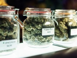 Massachusetts' First Recreational Cannabis Dispensaries