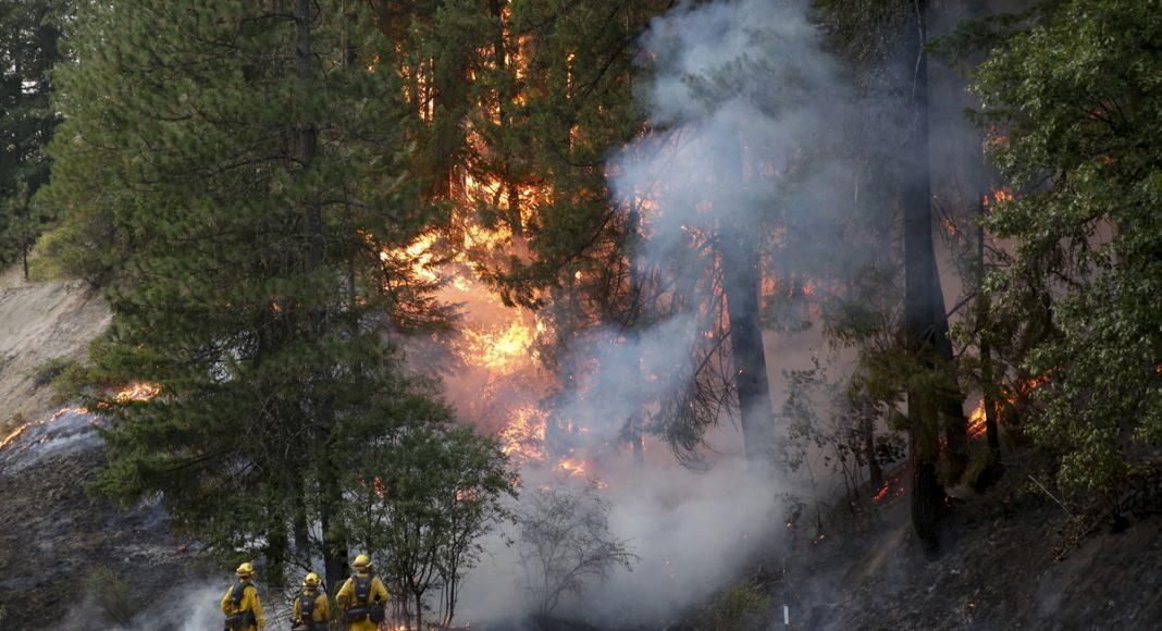 California Carr Fire: When Cannabis Crops Go Up In Smoke