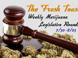 Marijuana Legislative Roundup