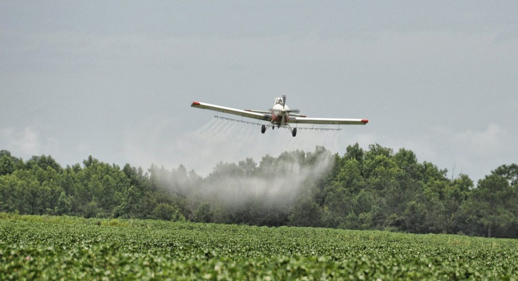 Lethal Pesticides Still A Problem In Legal Marijuana States