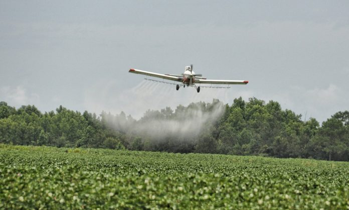 Lethal Pesticides Still A Problem In Legal Marijuana States