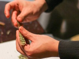 What Are The Best Cannabis Consumption Methods?