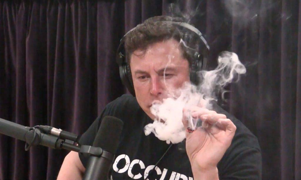 joe rogan smokes weed with elon musk