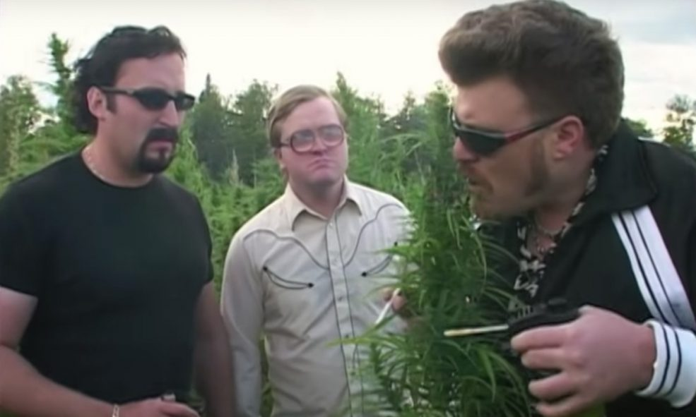 Image result for Trailer Park Boys Cannabis
