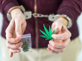 how serial podcast changed marijuana crime laws in ohio