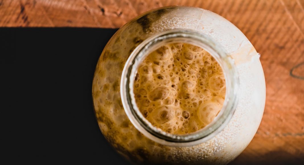 can yeast actually be used to create thc and cbd