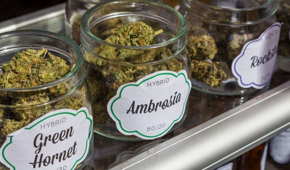 A Beginners Guide To Reading Marijuana Labels