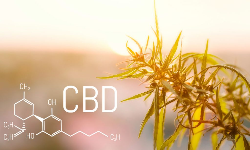 believe it or not cbd is a psychoactive cannabinoid