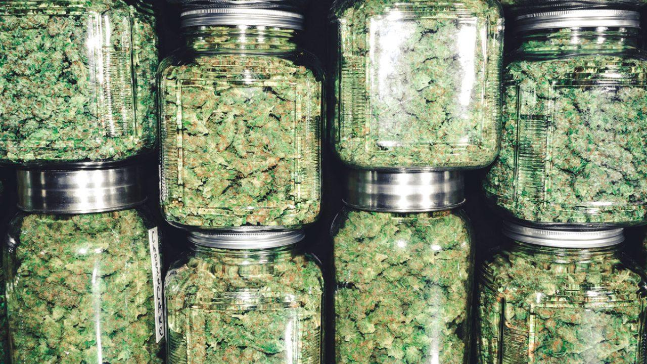 The Ultimate Newbie's Guide To Marijuana