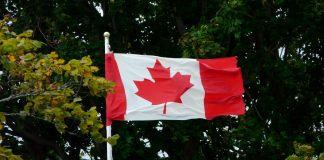 did canada blow its chance to be world cannabis leaders already