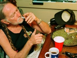 willie nelson just invented the best job at his marijuana company