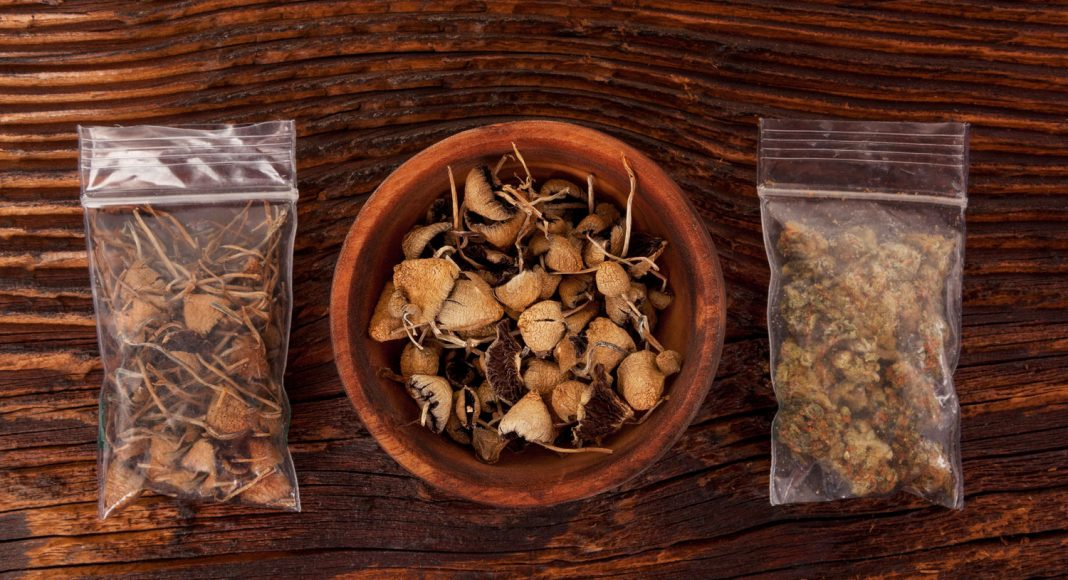 sorry but the science of microdosing psychedelics is slim