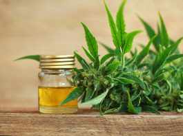 what is the best time of day to take cbd