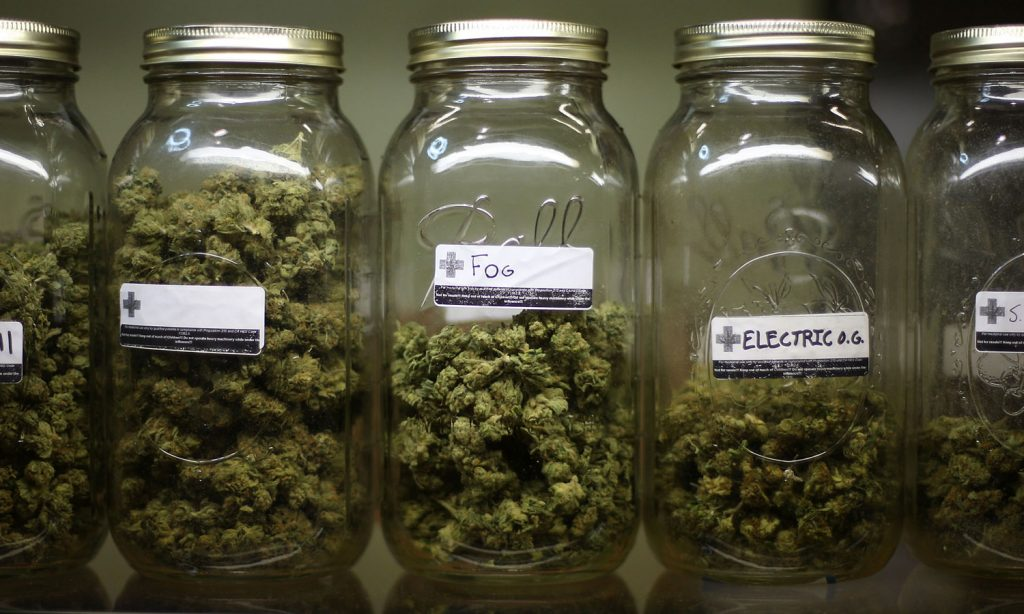 would medicare for all open access to medical marijuana for patients
