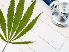disclosing marijuana use before surgery what you nee to know