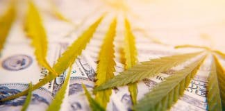 5 cannabis investor conferences worth attending in 2019
