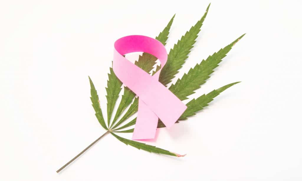 cannabis during breast cancer treatment what are the benefits