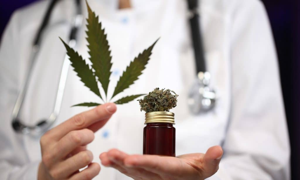 cbd as medicine how much do we know so far