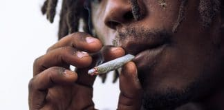 orderless weed is it real safe and everything else you need to know