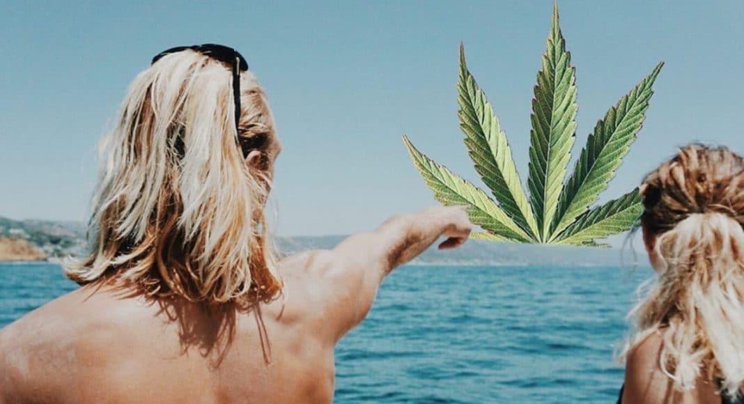 weedstagram highly devoted-