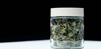 why adults with medical conditions use more marijuana