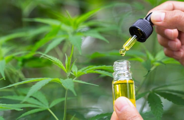 4 Biggest Problems With That CBD People Are Buying
