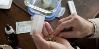 A Multi-Faceted Approach To Treating Multiple Sclerosis With Marijuana