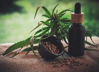 CBD Can Assist Those Addicted To Marijuana