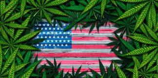 Grading The Presidential Candidates On Marijuana: Overall Rankings