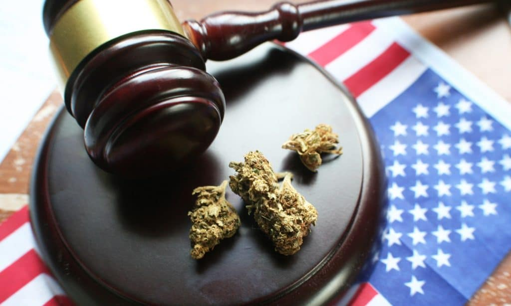 The Majority Of Americans Support Decriminalizing Drugs