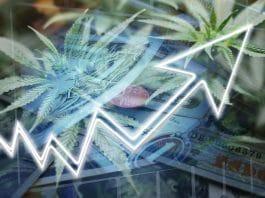 CNBC 'Mad Money' Host Jim Cramer Is No Longer High On Pot Stocks