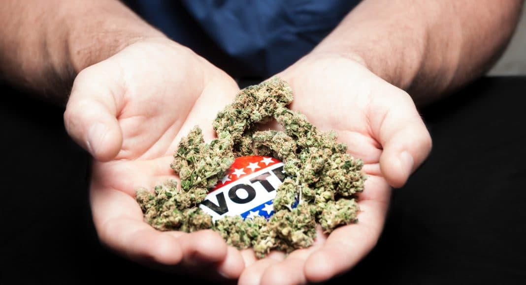 Cannabis Legalization: What's At Stake On Election Day