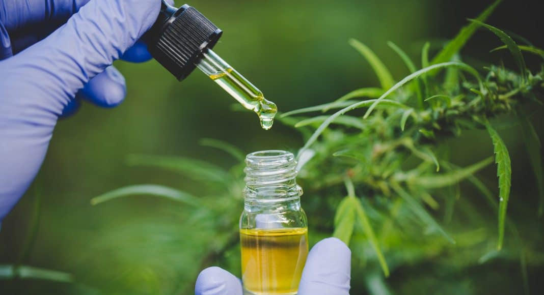 How CBD Provides A Brighter Future For Children With Epilepsy