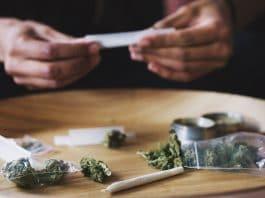 Study Finds Cannabis Use Disorder Declining Among Daily Marijuana Users