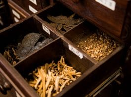 What We Can Learn About Cannabis From Chinese Medicine