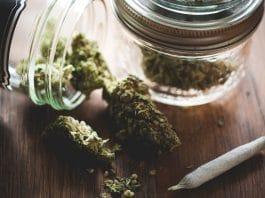 How Young Adults Are Misusing Medical Marijuana Prescriptions