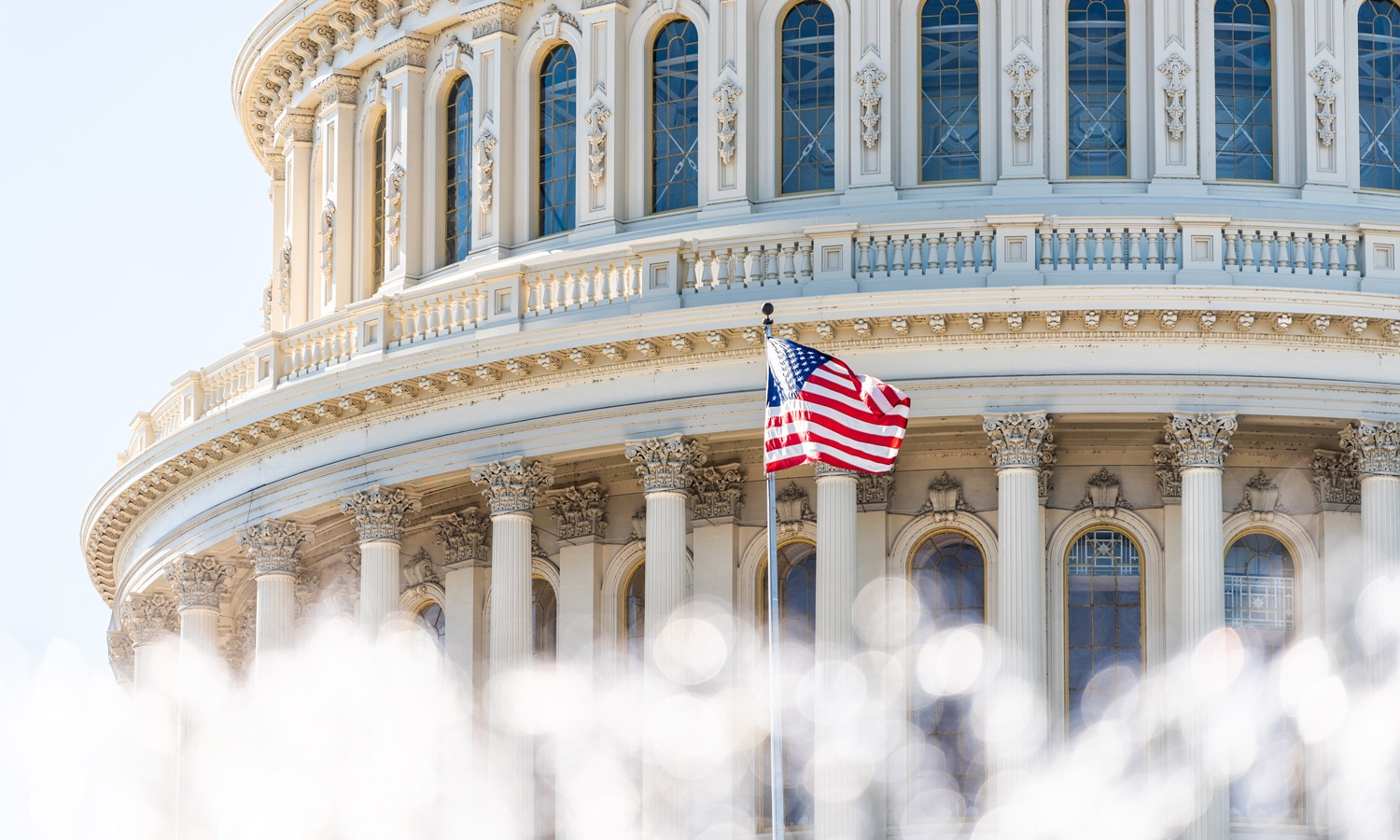 US House Not Strong Enough To Further Marijuana In 2019