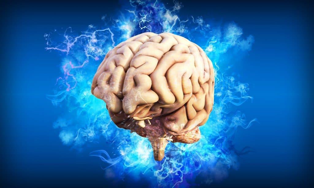 Brain Imaging Study Looks Into CBD's Antipsychotic Effects