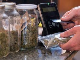 More Legal Marijuana Equals Less Crime? Not So Fast