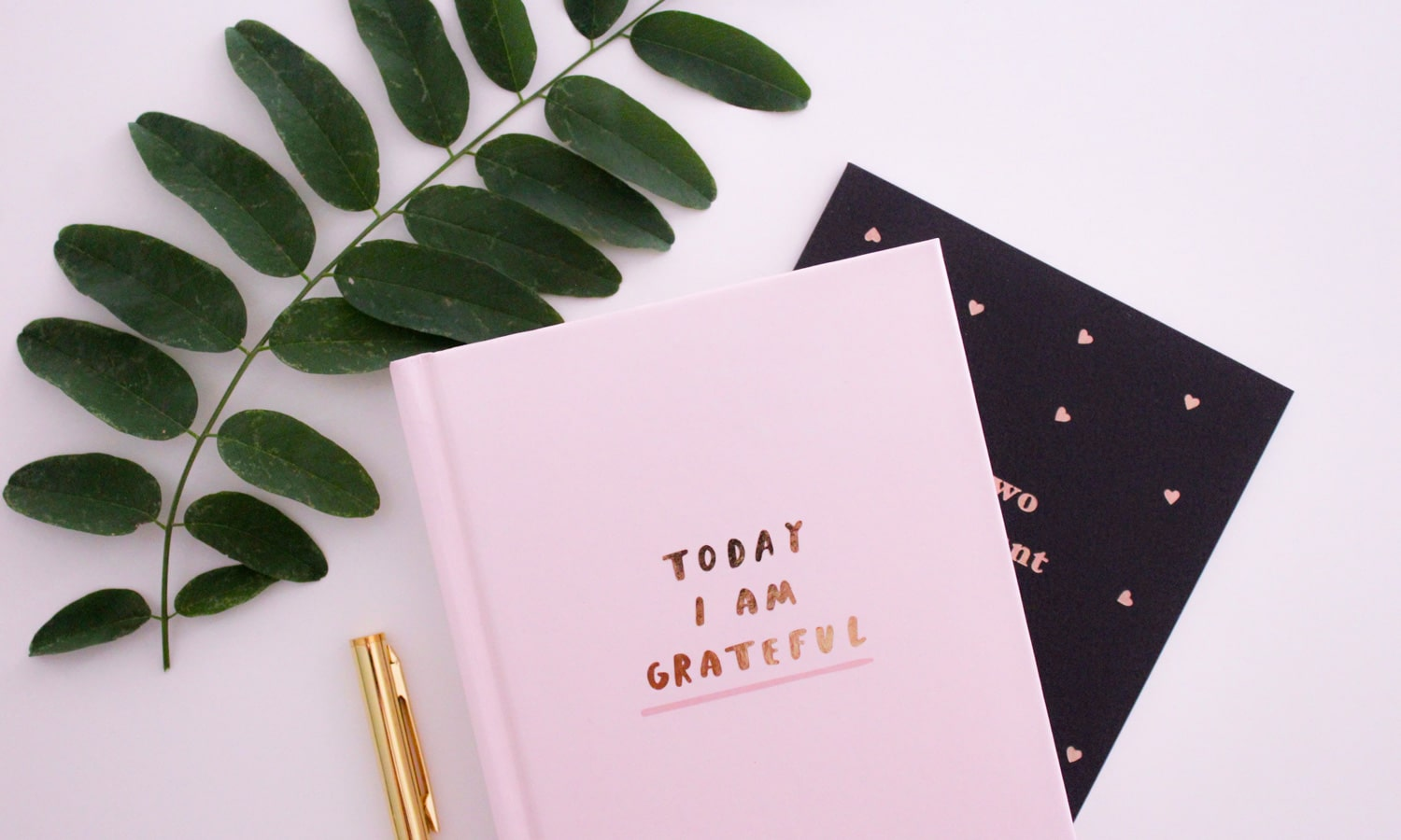 How To Practice Gratitude In Times Of Grief And Uncertainty