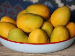 Experiment with Marijuana and Mangoes Under Quarantine