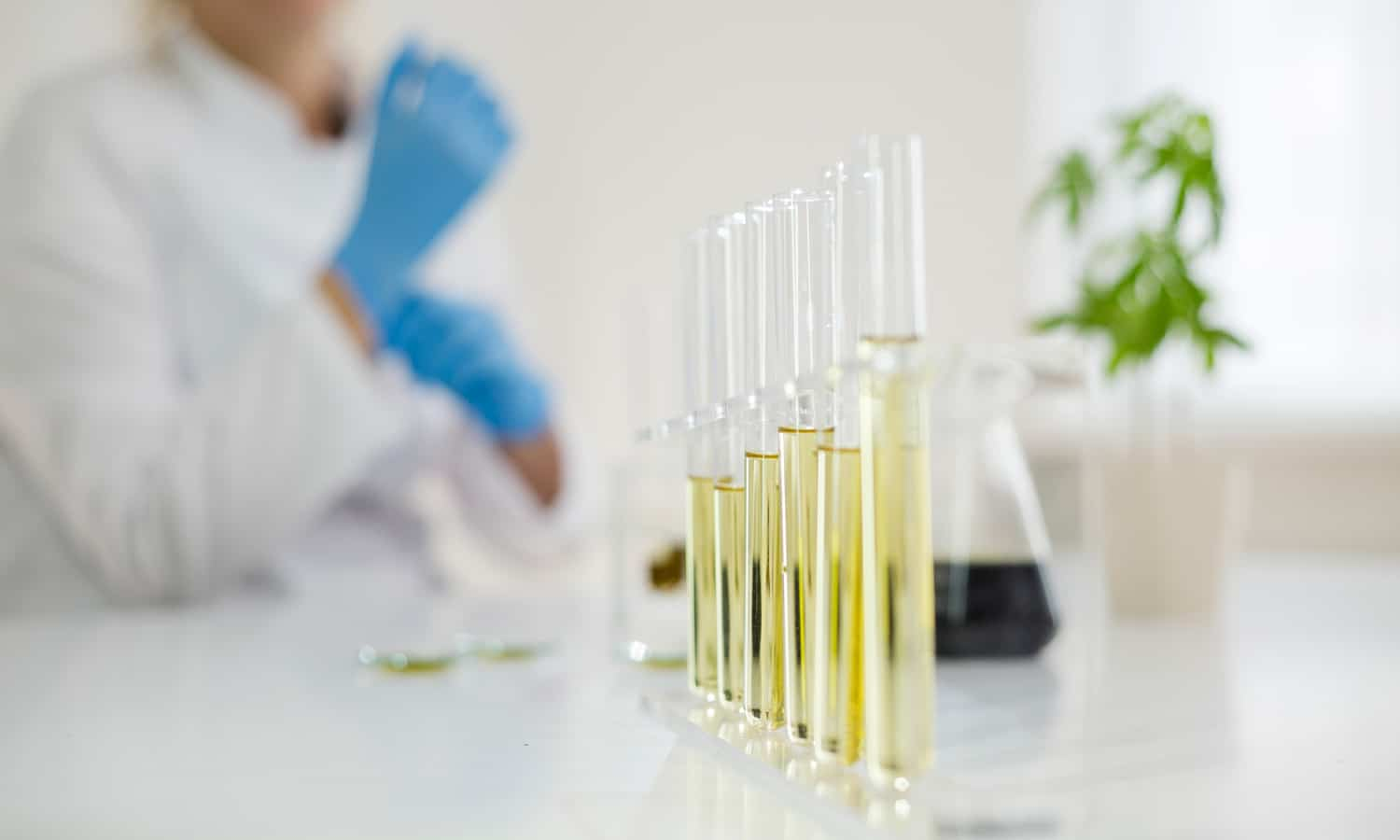The Truth About CBD And The Coronavirus Pandemic