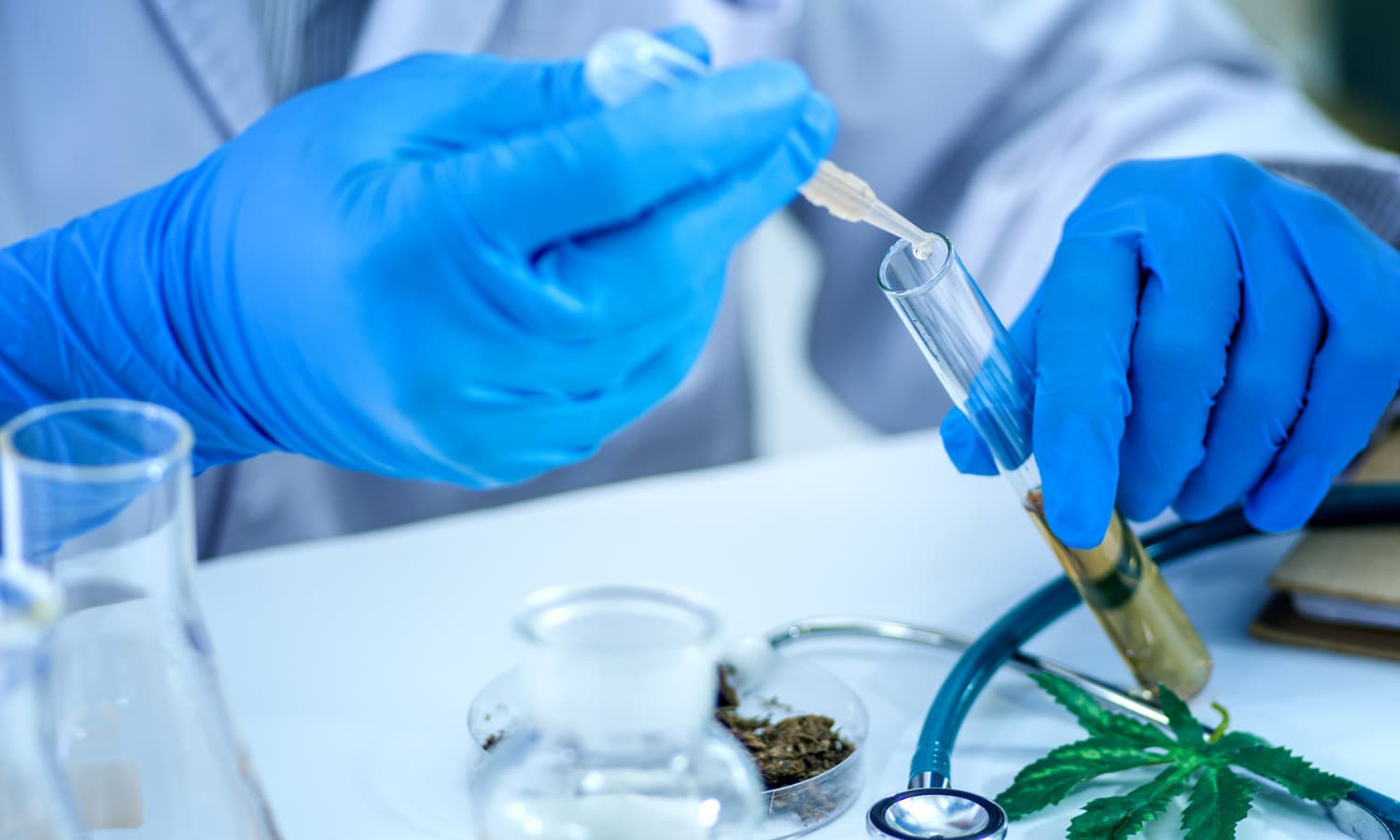 ICYMI: DEA And Cannabis Research Still Lousy Bedfellows