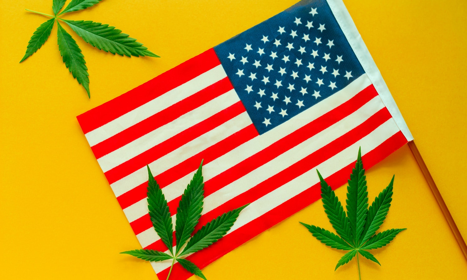The Role Marijuana Legalization Can Play In Fighting Racial Injustice